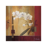Orchid Lines II Giclee Print by Don Li-Leger