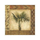 Palm Song II Giclee Print by Elizabeth Jardine