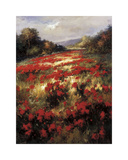 Carmine Meadow Giclee Print by  Leila