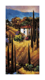 Hills of Tuscany Giclee Print by Nancy O'toole