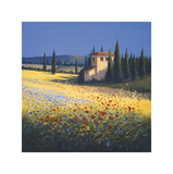 Summer Villa Giclee Print by David Short
