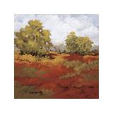 Scarlet Fields I Giclee Print by Maija Baynes