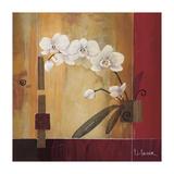 Orchid Lines II Giclée-tryk af Don Li-Leger
