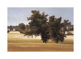 Montpellier Oak Giclee Print by Kent Lovelace