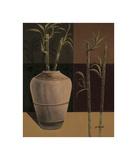 Lucky Bamboo II Giclee Print by Emmanuel Cometa