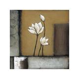Magnolia Rustique I Giclee Print by H. Alves