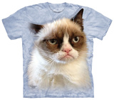 Grumpy in Blue T-shirts