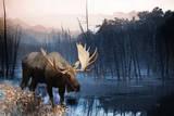 Moose Prints
