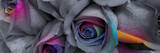 Flower Colors II Prints