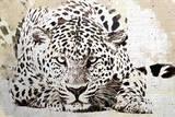 Leopard II Posters