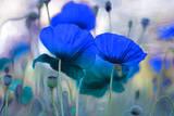 Fleurit en Bleu I Poster