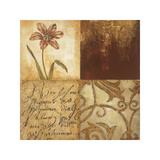 Tulip Manuscripts I Giclee Print by Elizabeth Jardine