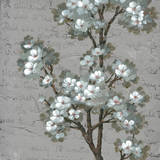 Floral Inspiration I Prints
