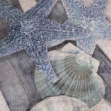 Seashore II Prints