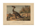 Compsognathus Longipes, Extinct Small, Bipedal, Carnivorous Theropod Dinosaur From the Jurassic Giclee Print by F. John