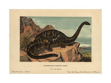 Apatosaurus Excelsus, Extinct Genus of Sauropod Dinosaur From the Jurassic Giclee Print by F. John