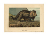 Triceratops Prorsus Marsh., Extinct Genus of Herbivorous Ceratopsid Dinosaur of the Cretaceous Giclee Print by F. John