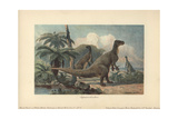 Iguanodons Were Herbivorous Dinosaurs From the Mid-Jurassic To Late Cretaceous Stampa giclée di Heinrich Harder