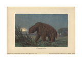 Megatherium Americanum Or Great Beast, Genus of Elephant-sized Ground Sloths Native To America Giclee Print by Heinrich Harder