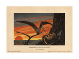 Pteranodon, Nyctodactylus Gracilis, Extinct Reptile From the Cretaceous Period Giclee Print by F. John