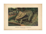 Torosaurus Latus And Monoclonius, Extinct Ceratopsid Dinosaurs From the Late Cretaceous Giclee Print by F. John