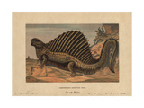 Dimetrodon, Extinct Predatory Synapsid Genus of the Permian Giclee Print by F. John