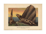 Dimetrodon Dollovianus, Predatory Synapsid From the Permian Giclee Print by F. John