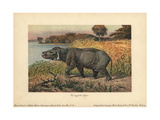 Coryphodon, Extinct Genus of Pantodont Mammal Giclee Print by Heinrich Harder