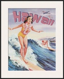 Fly to Hawaii Poster