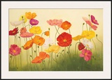 Sunlit Poppies Prints by Janelle Kroner