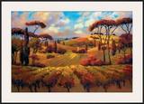 Evening Vineyard Prints by Teresa Saia