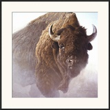Chief Posters by Robert Bateman