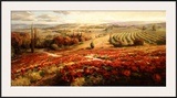 Red Poppy Panorama Posters by Roberto Lombardi