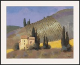 Panzano Framed Giclee Print by William Buffett