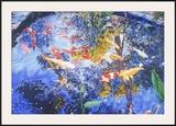 Pond with Goldfish, 2004 Posters by Joseph Raffael