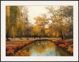Weeping Willow Prints by Diane Romanello