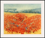 Poppy Field in Provence Posters by  Zarou
