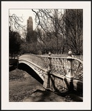 Central Park Bridges II Framed Giclee Print by Christopher Bliss