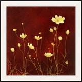 Flores en el Campo II Prints by  Clunia