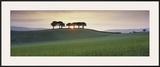 Somerset Sunrise Framed Giclee Print by David Noton