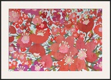 Cherry Blooms Prints by Sally Bennett Baxley