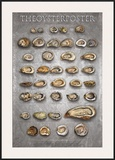The Oyster Poster Prints by  Marinelli