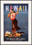 Hawaii by Clipper Prints