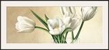 Vaso con Tulipani Bianchi Posters by Eva Barberini