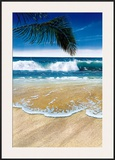 Palm Breezes I Posters by Jaqueline Kresman