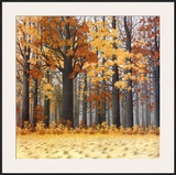 Autumn Wood Print by  Arzt
