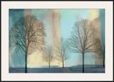 Misty Morning I Prints by Chris Donovan