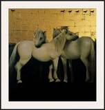 Horse Series I Prints by Peter Fraenkel