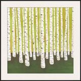 Birch Forest Framed Giclee Print by Lisa Congdon