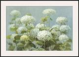 White Hydrangea Garden Print by Danhui Nai